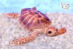Sea turtle toy