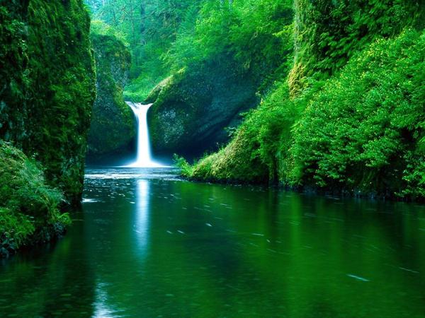 Nature... by jorgegaep200
