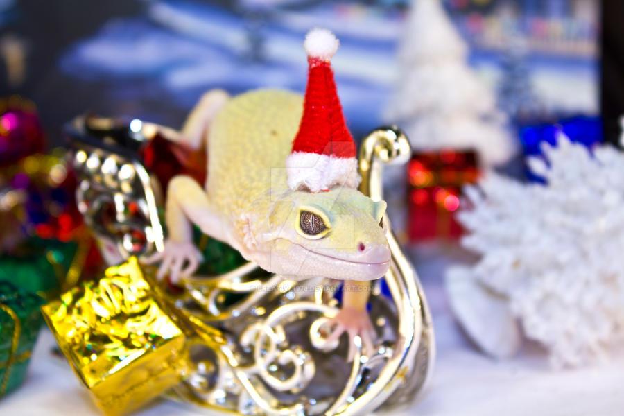 Odin Christmas Sleigh 2011-3 by creative1978 on DeviantArt