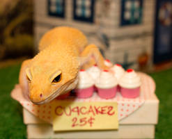Lucille's Bake Sale - 1159