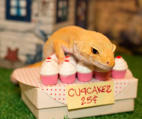 Lucille's Bake Sale - 1155