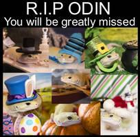 Odin-RIP
