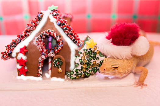 Lucille's Gingerbread House - 3202