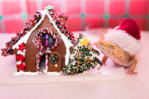 Lucille's Gingerbread House - 3198