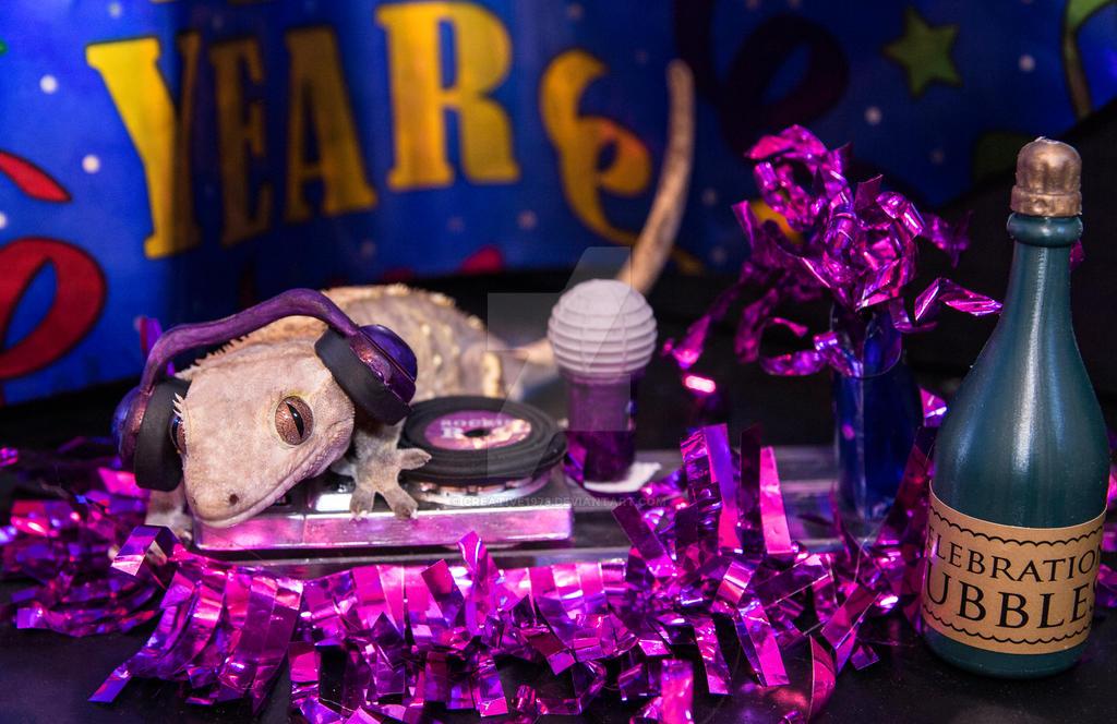 Fabio - New Years Party DJ - 3269 by creative1978