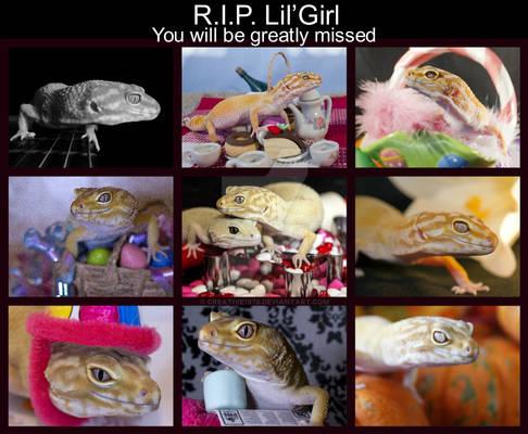 RIP Lil' Girl