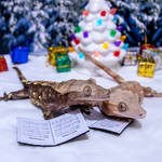 Fabio and Poppy Christmas Carolers 2019 - 9092
