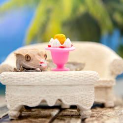 Ginger - Ice Cream Sundae - 2021 - 9152