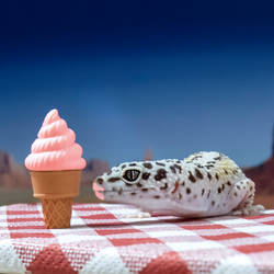 Scarlett - Ice Cream 2020 - 6694