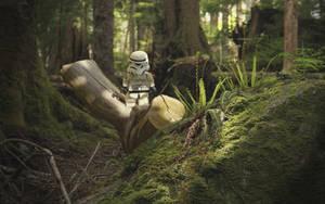 Stormtrooper - ENDOR by Kveldsvanger
