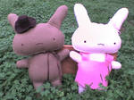 Mr. and Ms. Bunny