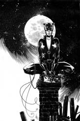 Catwoman commission low res