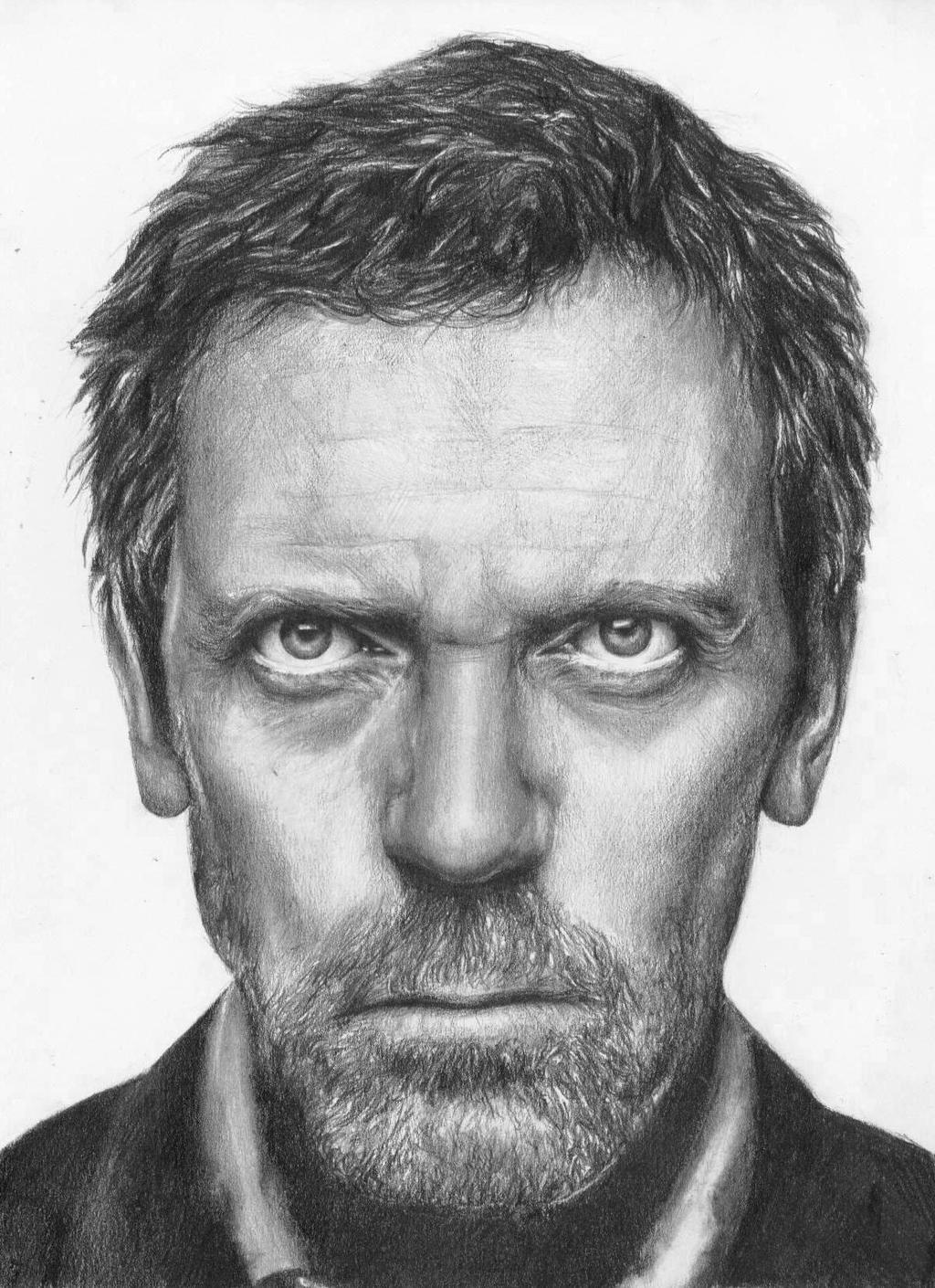 house hugh laurie by simple sarah