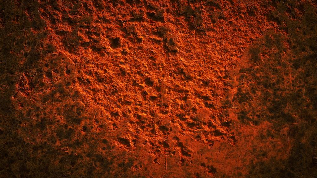Rust Never Sleeps by scottsmith17