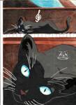Gato (Shigatsu wa kimi no uso)