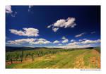 Summerwonderland VII by MCG0603