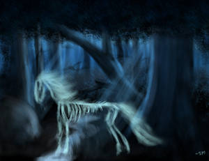 The Ghostly Stallion