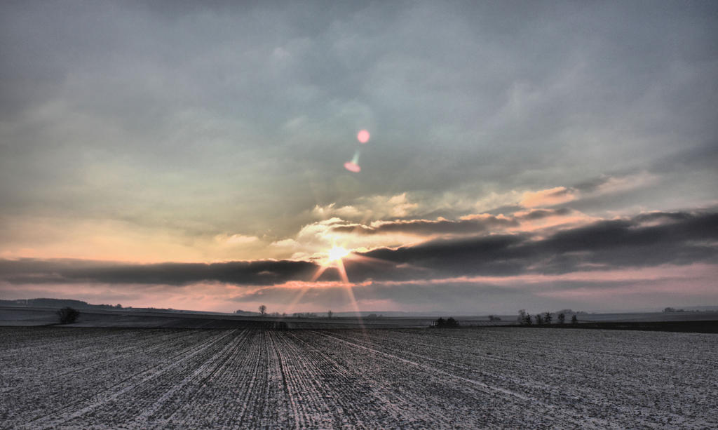 Wintersun by MK-NI
