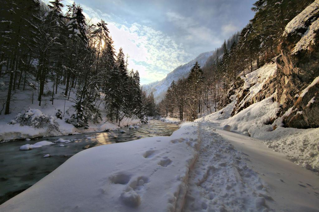 The Trail 2 by MK-NI
