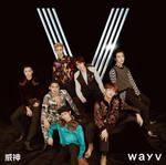 WayV The Vision