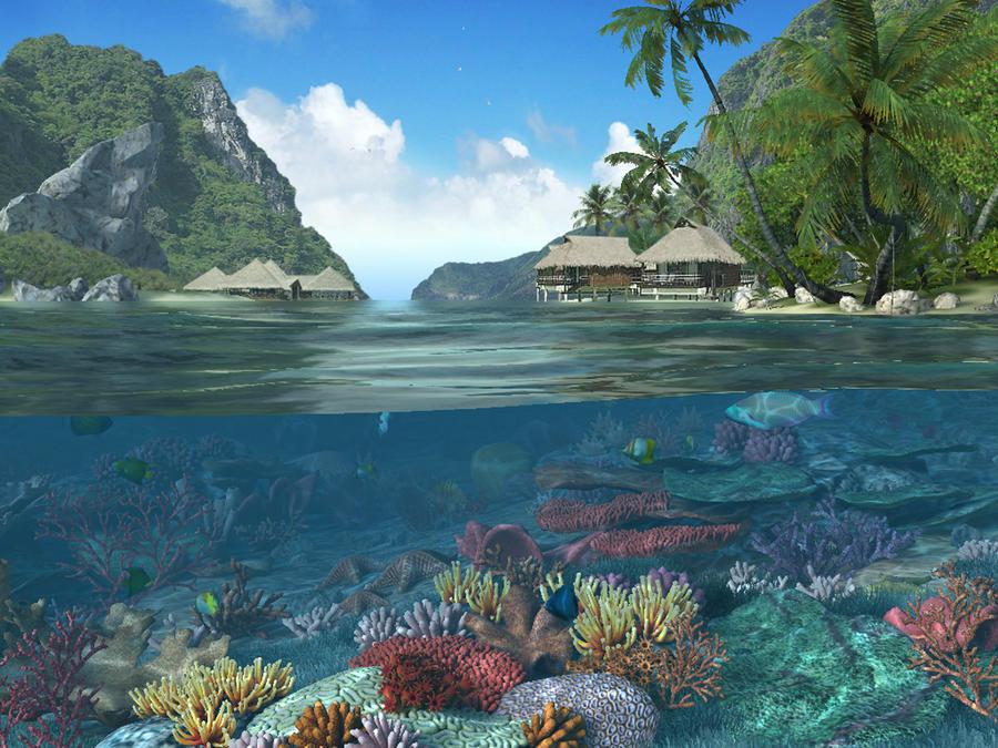 coral reef 5