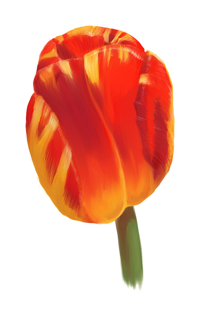 Mother's Day Tulip by Teela-B