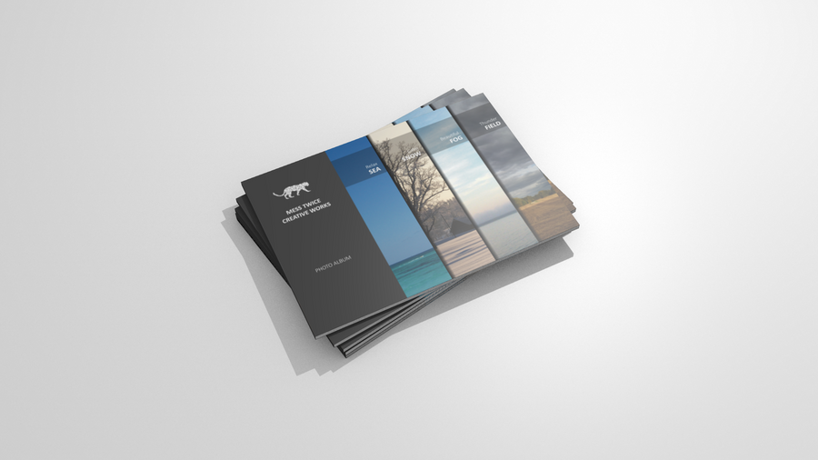 Book Cover Illustration, Vector + 3d by messtwice
