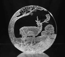 Hand engraved crystal glass by glassartist07