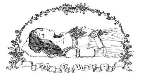 Sleeping Beauty by DarkDevi