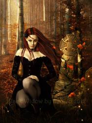 Black Widow by shiny-shadows-Art