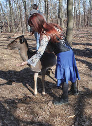 Deerwhisperer by ImperataLexinor