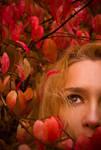 Red Autumn_2011_025