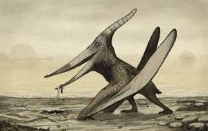 Pteranodon by tnilab-ekneb121