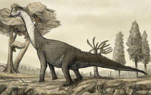 Camarasaurus by tnilab-ekneb121