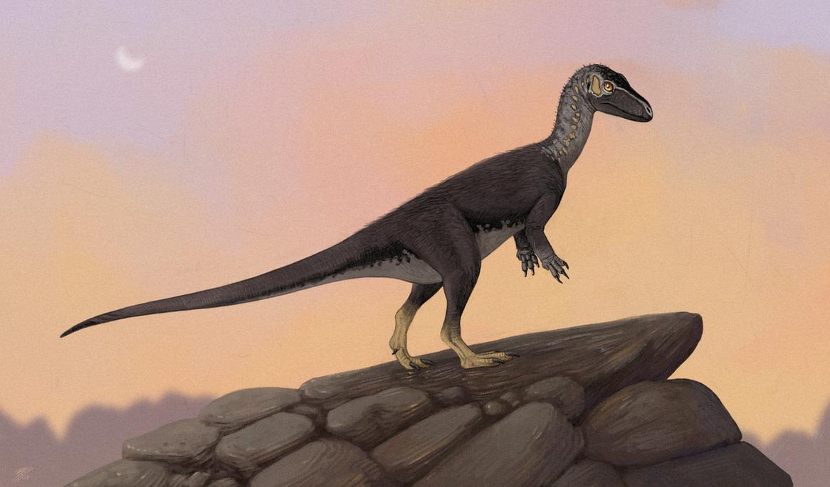 eoraptor by tnilab-ekneb121