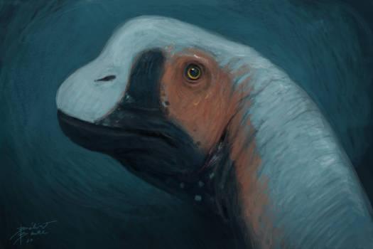 Joschua Knuppe's Europasaurus fanart