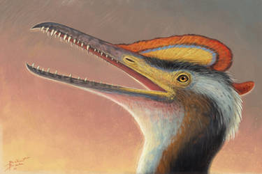 Pterodactylus kochi