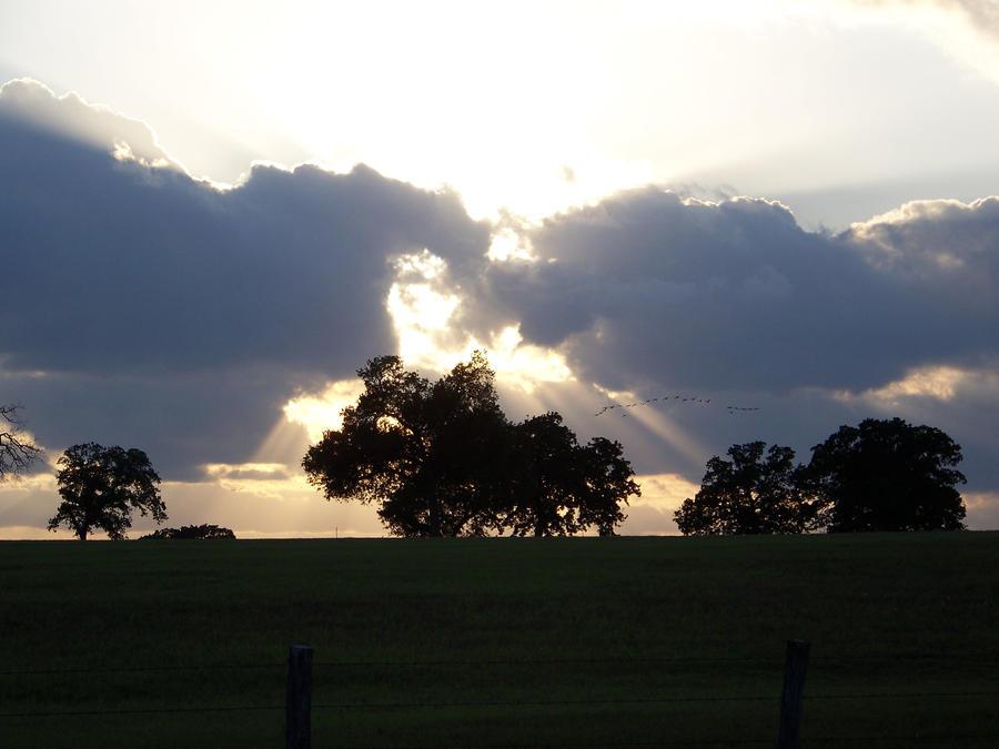 The Jesus Cloud