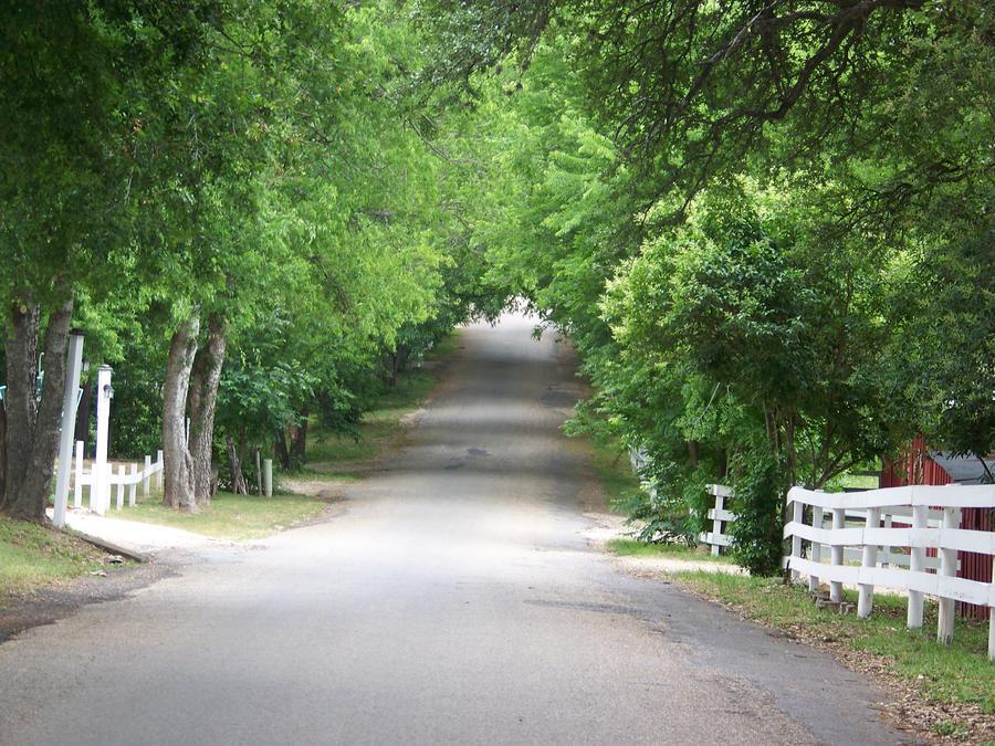 Down to the Creek by tiffanylayne