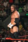 WWE - Nov07 - Triple H 03