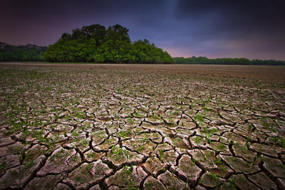 The Great Texas Drought by Relic-57