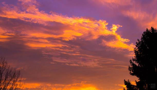 A neon sky