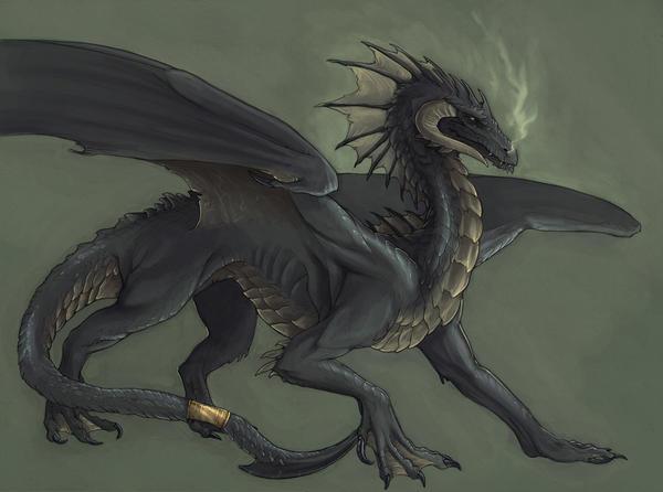 [Maître Noir] Alauwyr Iskuvar & Estenir Sinistre_black_dragon_by_Rhynn