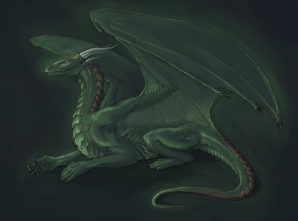 AVATAR POUR TOUS Forest_Dragon_Arimah_by_Rhynn