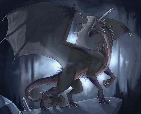 Shadows_draggie_by_Rhynn.png