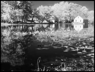 Murray's Mill, NC by junkster78