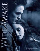Wide Awake - Banner
