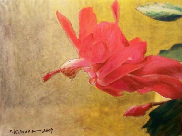 xmas cactus pastel by TomKilbane