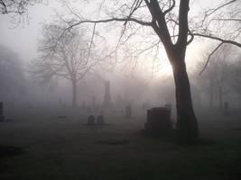 foggy morn by TomKilbane