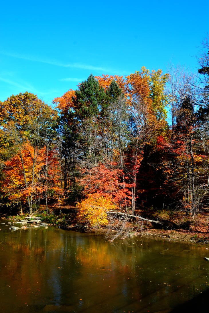 Cleveland Metro Parks in October by TomKilbane